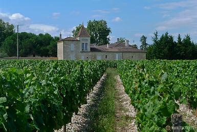 Grape Opportunities Wine UK wine supplier, Mas Peyrolle wine