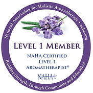 NAHA Level 1.jpg
