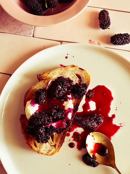 Mulberry and apple cidervinegar jam