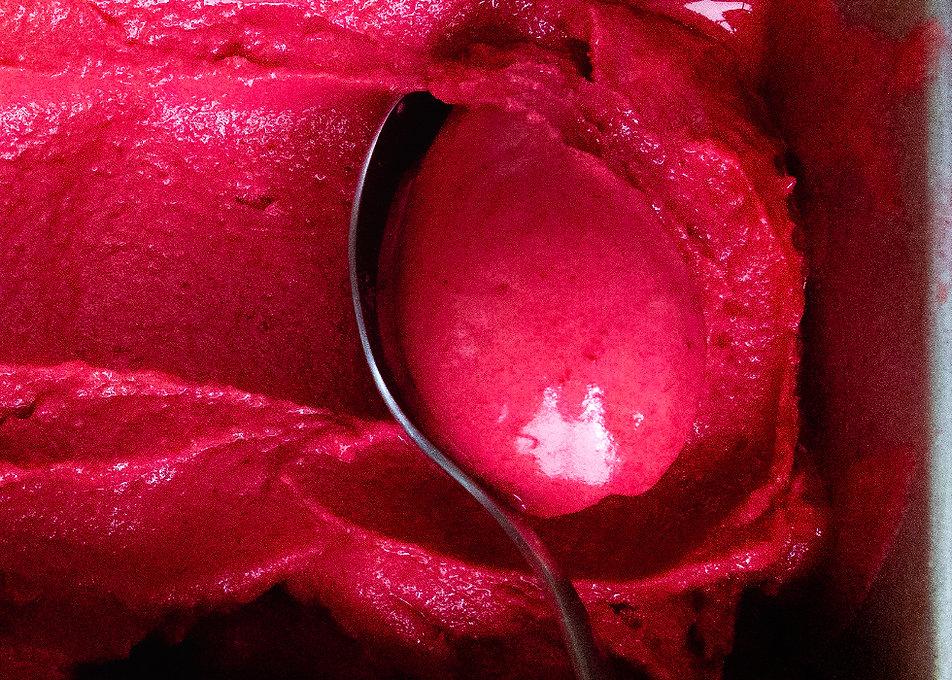 satsuma plum and berry sorbet 980x700.jp