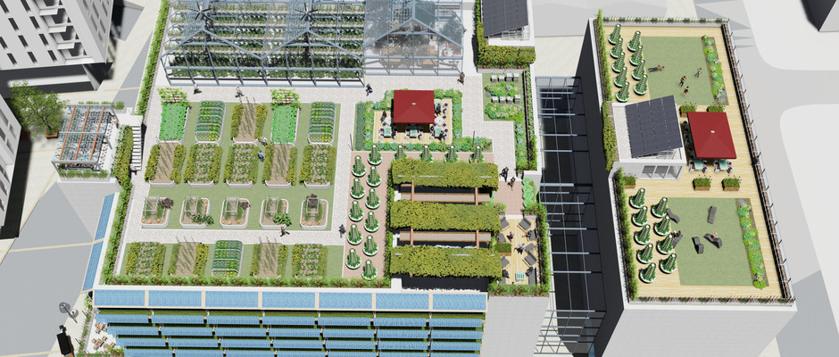 Future City Hubs provide space and opportunity for diverse circular economy food system activities as well as leisure opportunities.