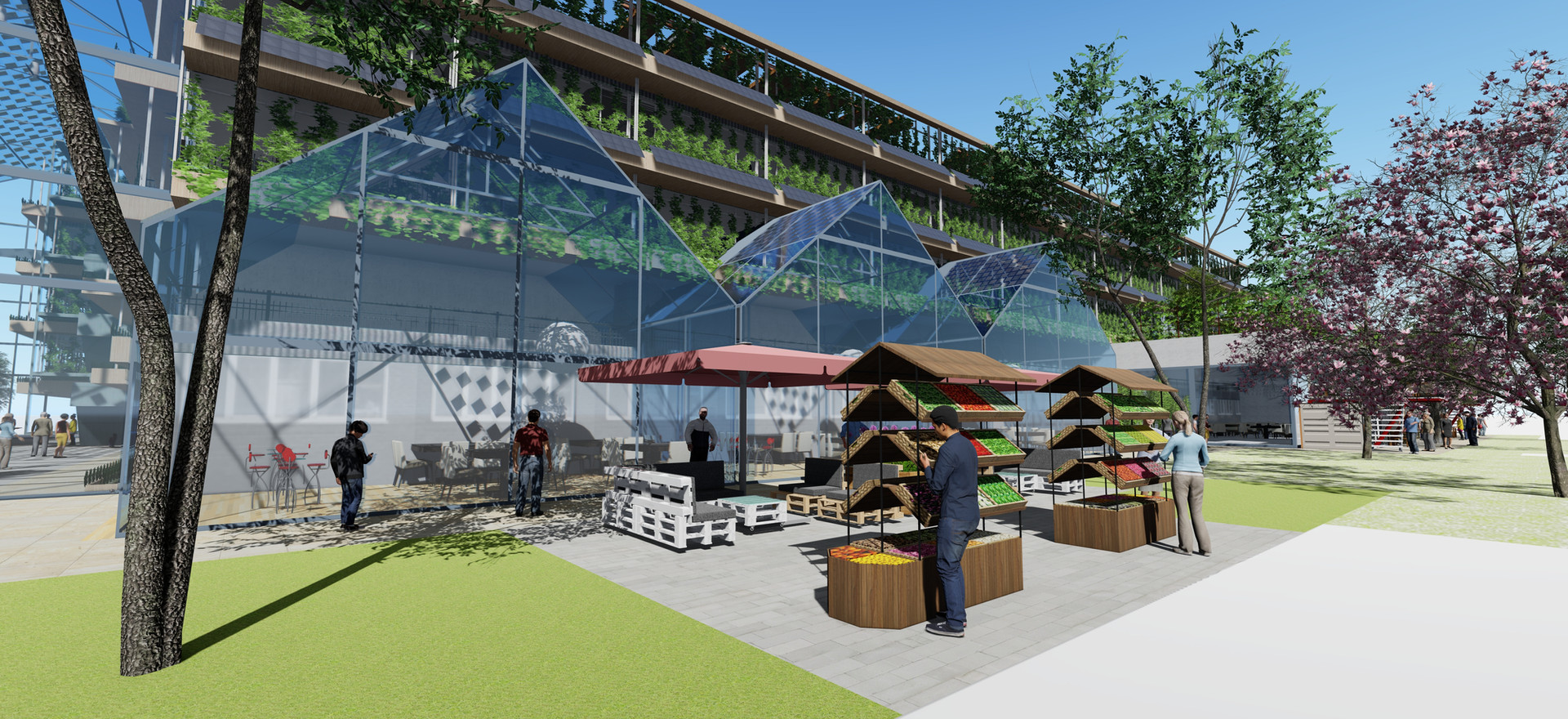 Future City Hubs help to diversify businesses in the food system through well-considered looped economy strategies.