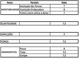 Impulsão_vasco.png