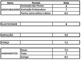 Ralão_Maltez.png