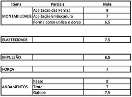 Montabiliadade-Miguel.png