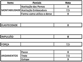 Vasco_Maltez.png