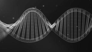 DARPA to Fund CRISPR Diagnostics Using Mammoth, IDbyDNA Technologies