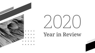 ARTIS Ventures: 2020 Year in Review