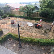 Before replacing a lawn