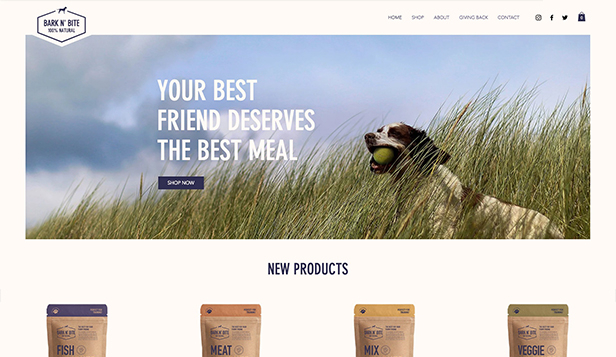 Online Store website templates – Dog Food Online Store