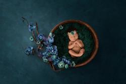 Newborn picture in a green bowl
