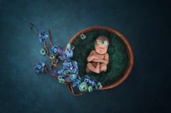 Newborn Baby on Blue Backdrop