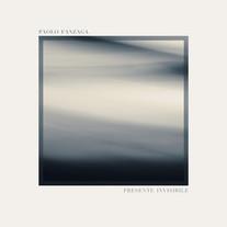 Presente Invisibile / Paolo Fanzaga