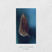 Awake / Wave of Sound