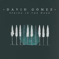 Spring in the Dark / David Gómez