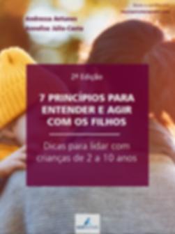 7 principios.png