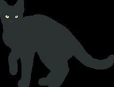 Just Cat.png
