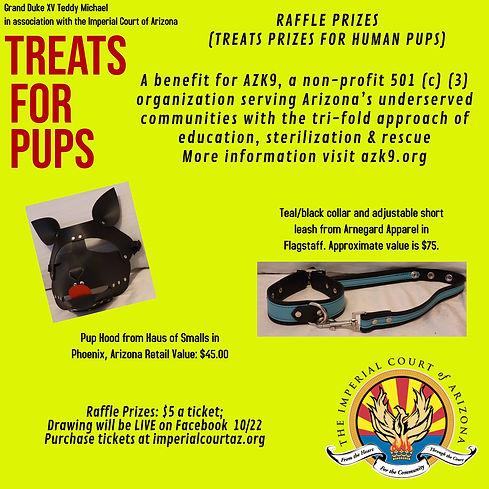 Treats for Pups Raffle Rev.jpg