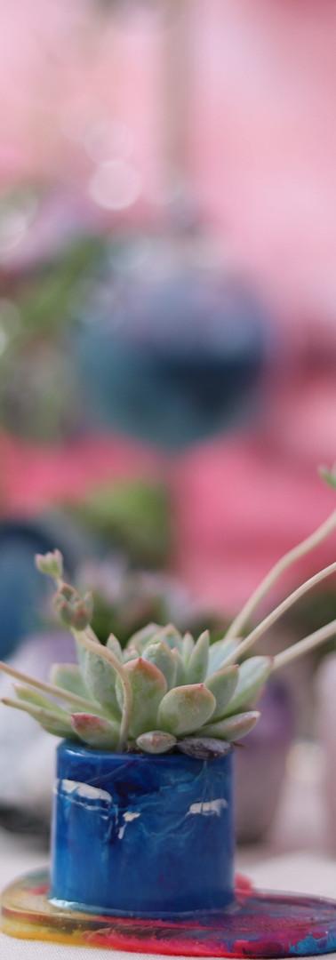 Mini Succulent Holders