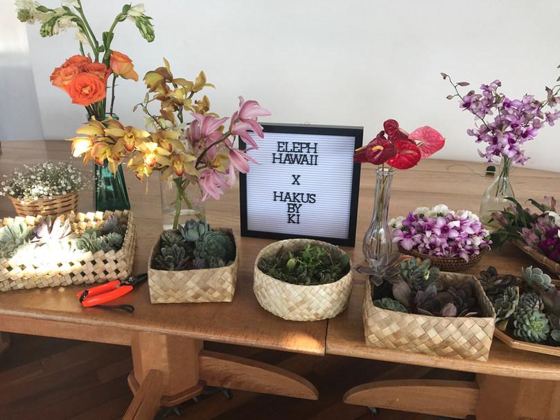 Succulent Haku Lei (Flower Crown) Workshop