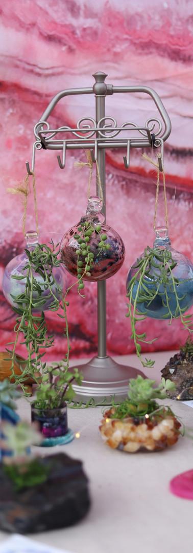 Succulent Glass Globes