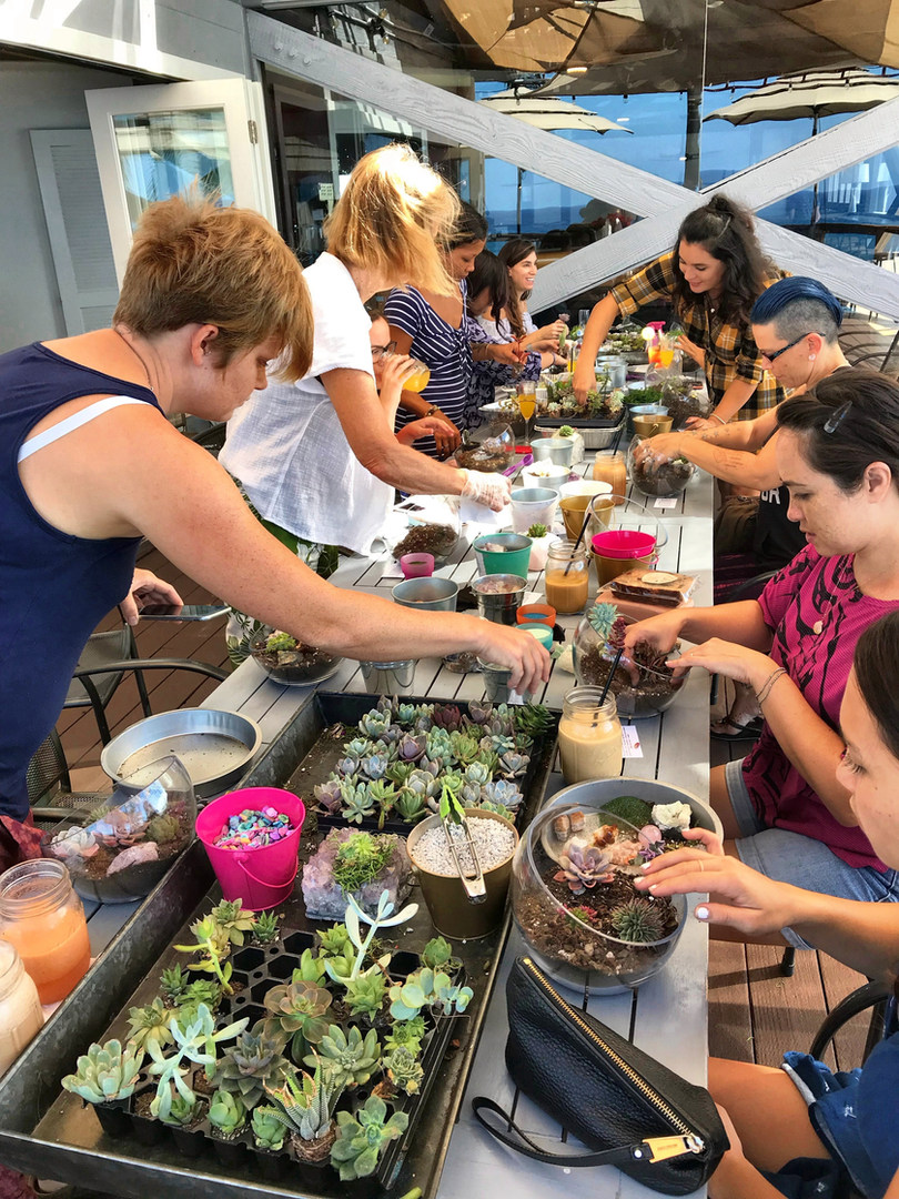 Succulent & Crystal Terrarium Workshop