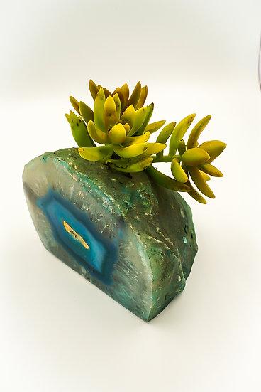 Blue Agate Succulent Crystal