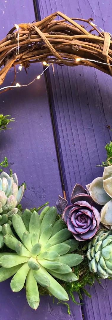 Mini Succulent Wreath