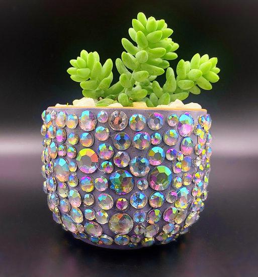 Shiny Disco Pot