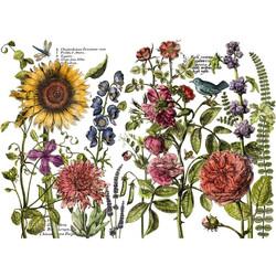 iod-decor-transfers-botanistss-journal