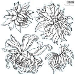 Decor Stamp Chrysantemums