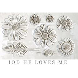 iod-mould-he-loves-me