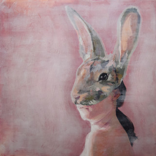 Noho Rāpeti  (Stay Rabbit Stay)
