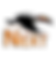 ornitófilo uberlandia