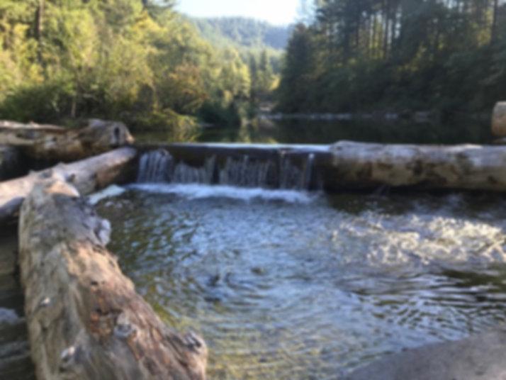 Dougan Creek2.jpeg