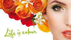 Zuii Organic Makeup