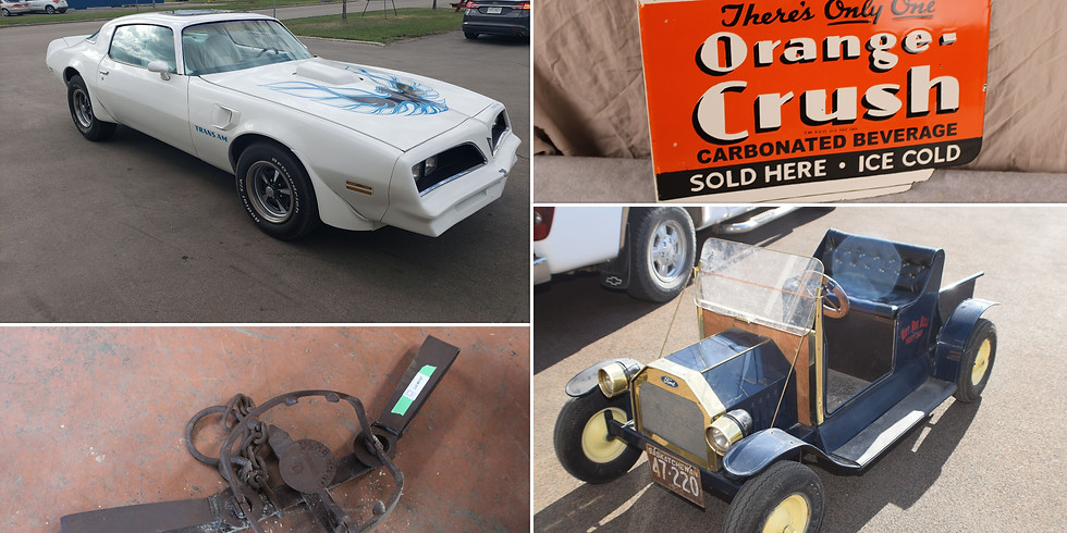 June 15th Specialty Collectibles TIMED ONLINE Auction Sale