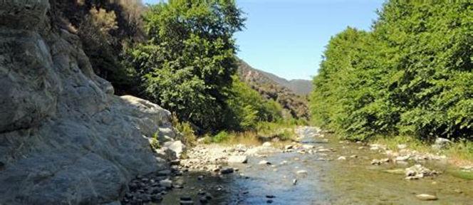 SG River-natural upstream view.jpg