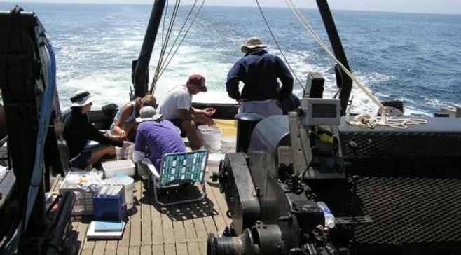 OCSD Trawling_470x260.jpg