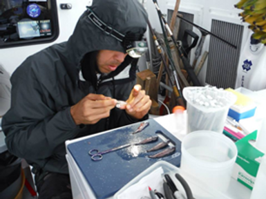 Reyes working in on-board laboratory.png