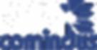 cliente_comidus_mixoslutions.png
