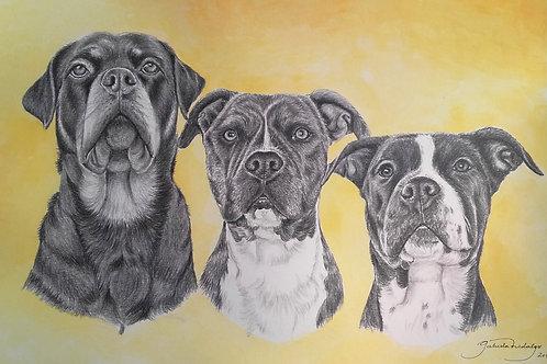 Retrato a Lápiz de Grafito y Acuarelas (3 personas y/o animales)