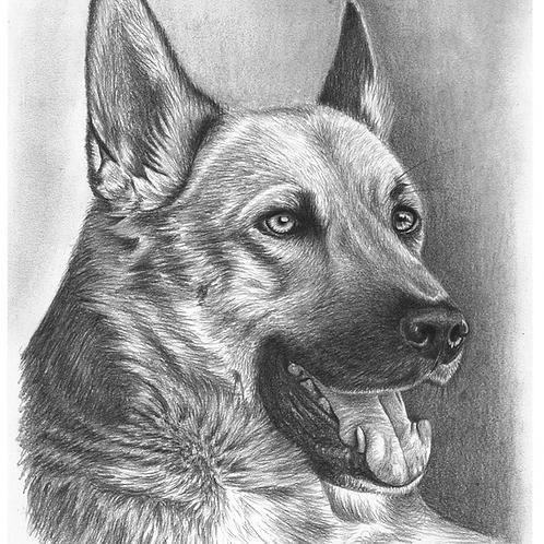Retrato a Lápiz de Grafito de una figura (animal o persona)