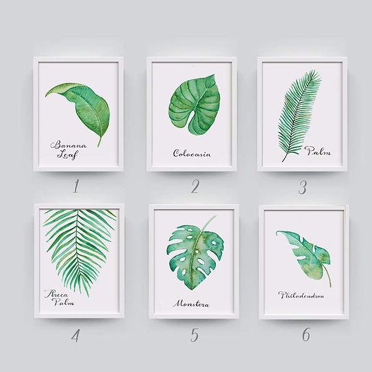 Serie hojas verdes numeradas- GG love Pr