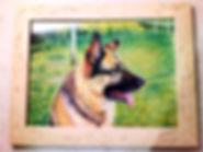 Retrato por encargo de la mascota.jpg