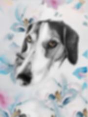retrato por encargo mascota acuarelas