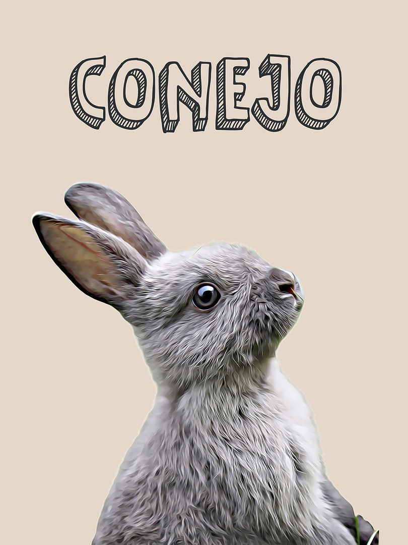 Conejo-Sé rápido-Animales Nursery