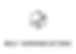 Bolt logo combined.jpg