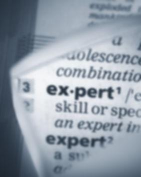 Expert-Witness-1024x682_edited.jpg