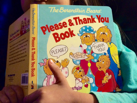 The Berenstain Bears Say Please & Thank You